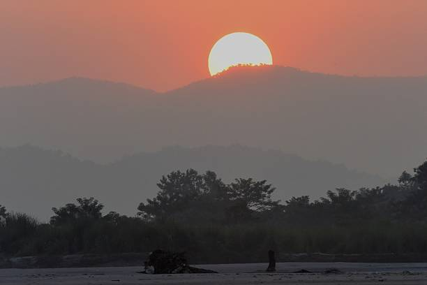 Sunset in Nepal's jungle stock photo