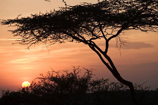 Sonnenuntergang in Omo Valley – Foto
