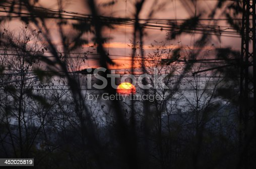 Look to sunset through tree branches and industrial railways wires