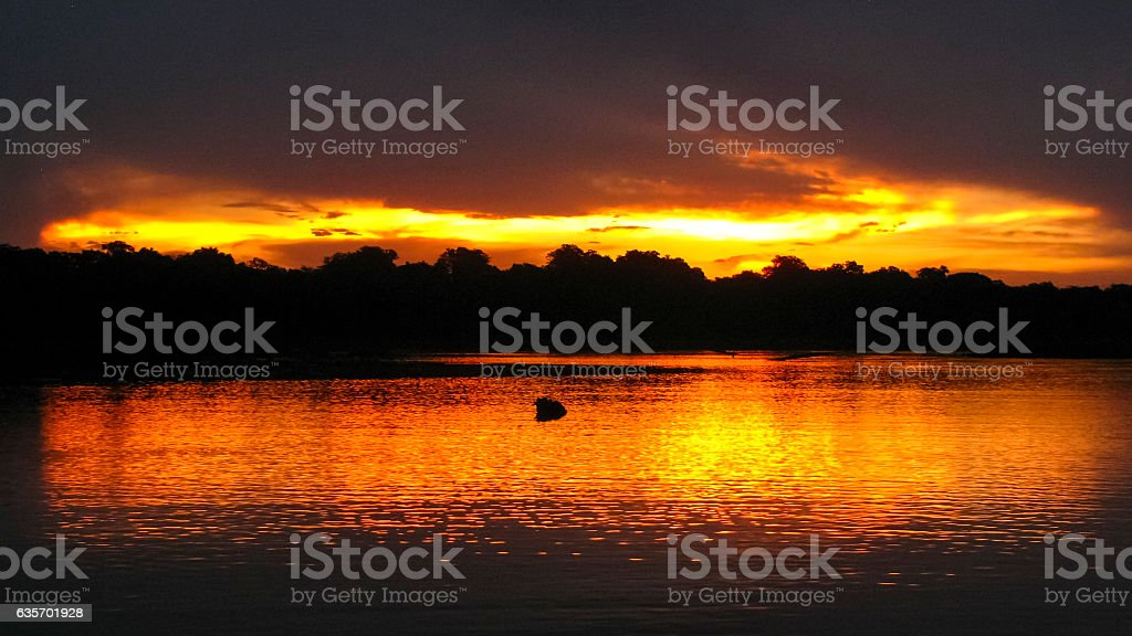Sunset in Serere Reserve, Bolivia royalty-free stock photo