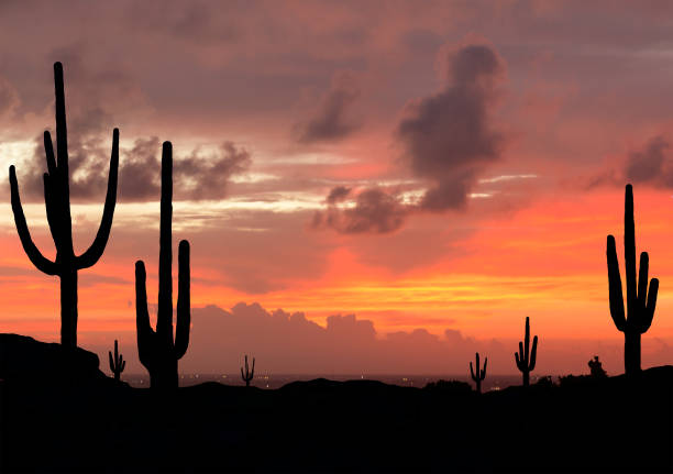 sunset in southwest desert - wild west stock photos and pictures