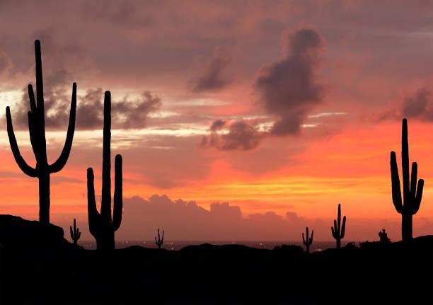 Coucher de soleil dans le désert du sud-ouest - Photo