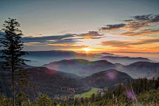 Sunset in the Black Forest stock photo