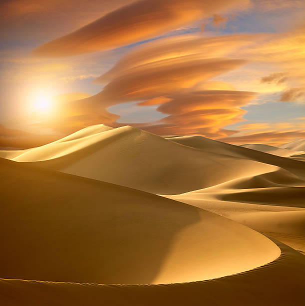 sunset in the desert - sand dune stock photos and pictures