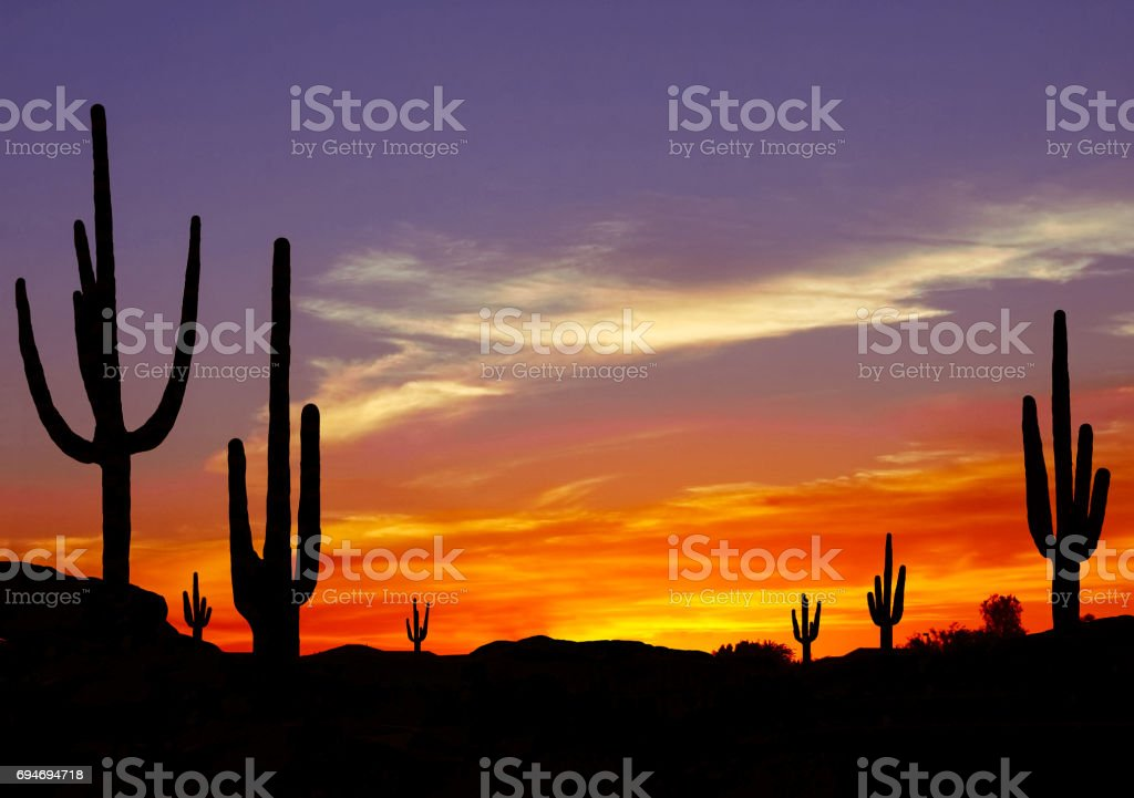 Sunset in the Desert stock photo