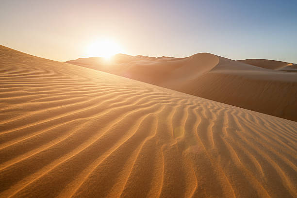 sunset in the desert united arab emirates - sand dune stock photos and pictures