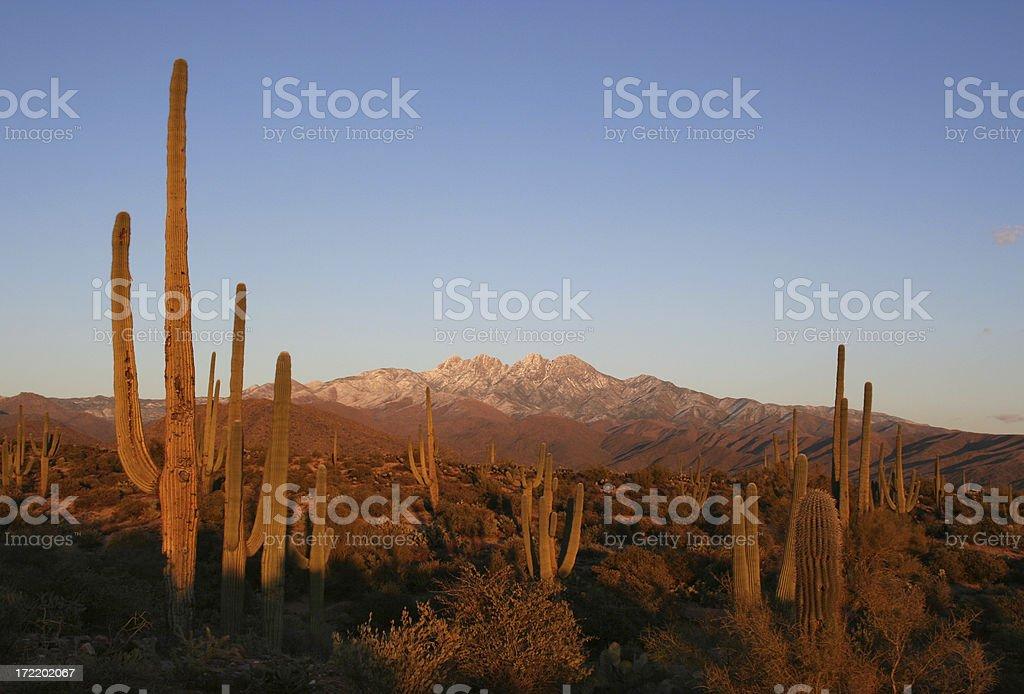 Sunset in the Four Peaks Wilderness - Arizona Desert Scene royalty-free stock photo