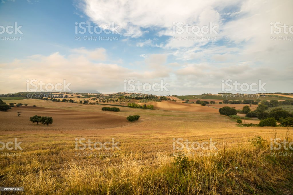 Sunset in the italian countryside royalty-free stock photo