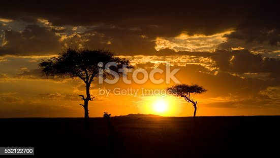 Sunset In The Maasai Mara National Park Africa Kenya Stock Photo & More Pictures of Africa