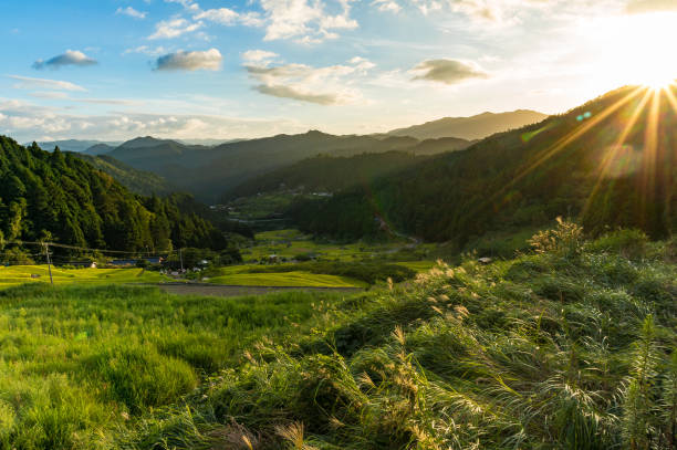 sunset in the mountains with rice paddy fields and forest - satoyama scenery stock photos and pictures