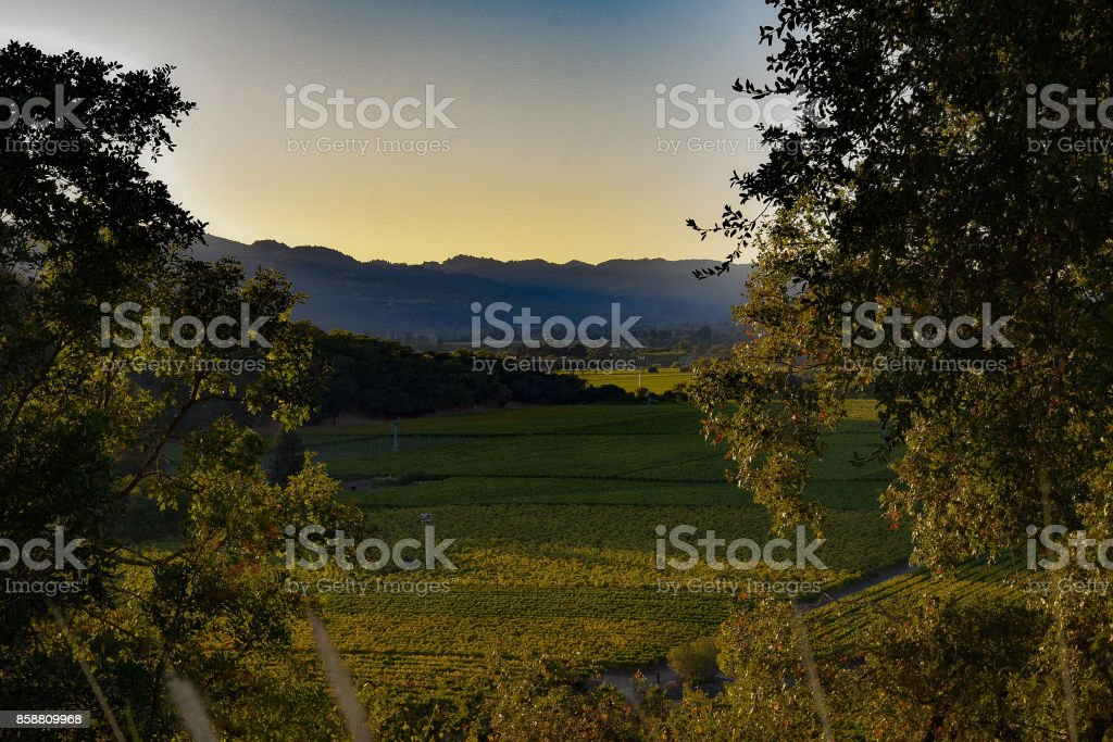 Sunset in the Napa Valley, CA stock photo