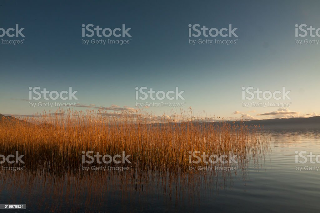 sunset in the nature stock photo