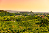 Sunset in the Prosecco Valley,1