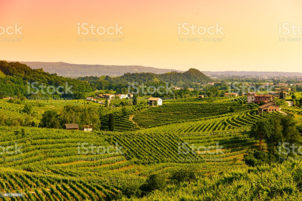 Sunset in the Prosecco Valley,1 stock photo