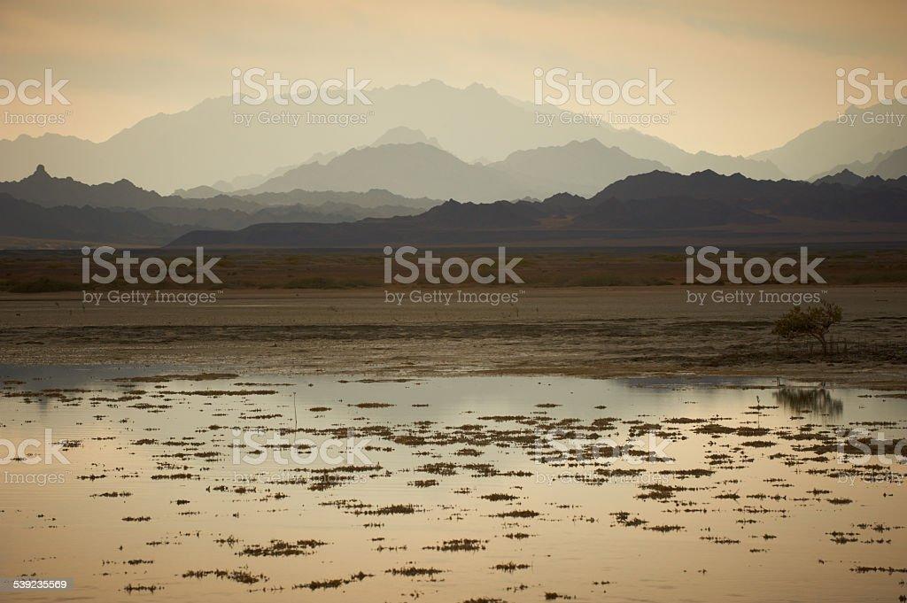 Atardecer en el desierto de Sinai foto de stock libre de derechos