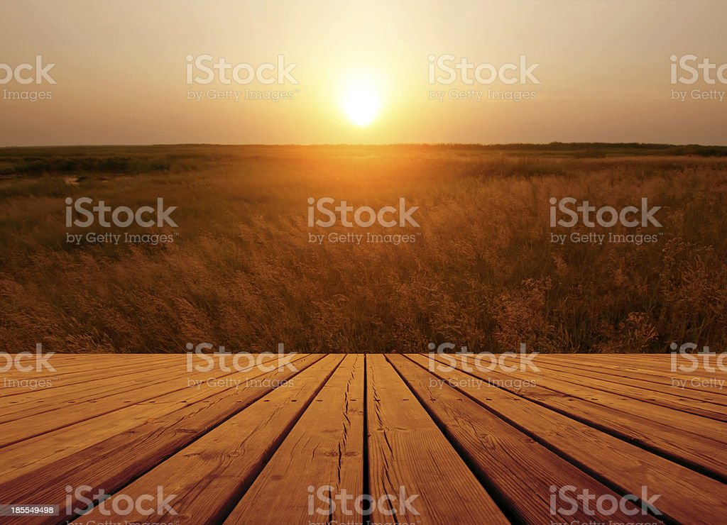 Sunset in the steppe stock photo