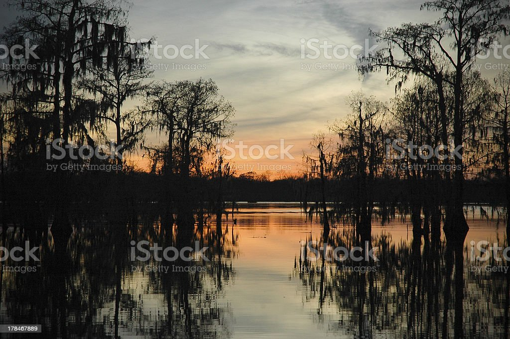 Sunset in the Swamp stock photo