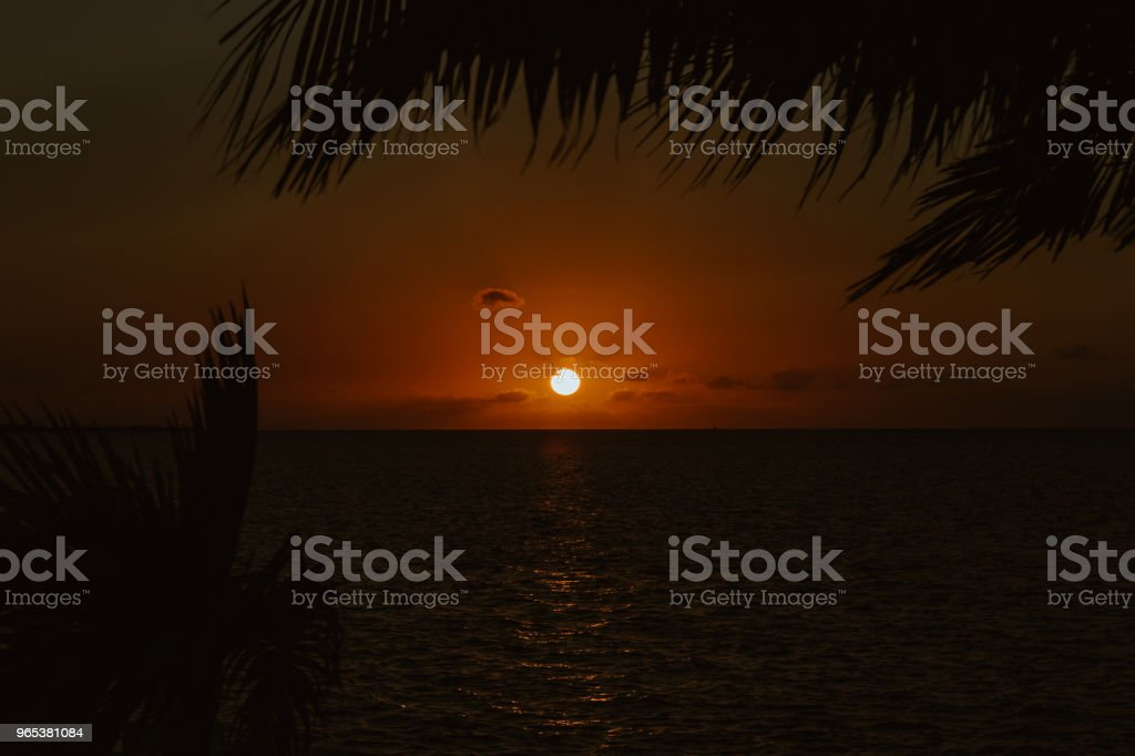 Sunset in the tropics royalty-free stock photo