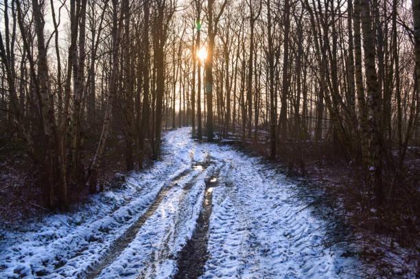 solnedgång på vintern - bernkastel kues höst bildbanksfoton och bilder