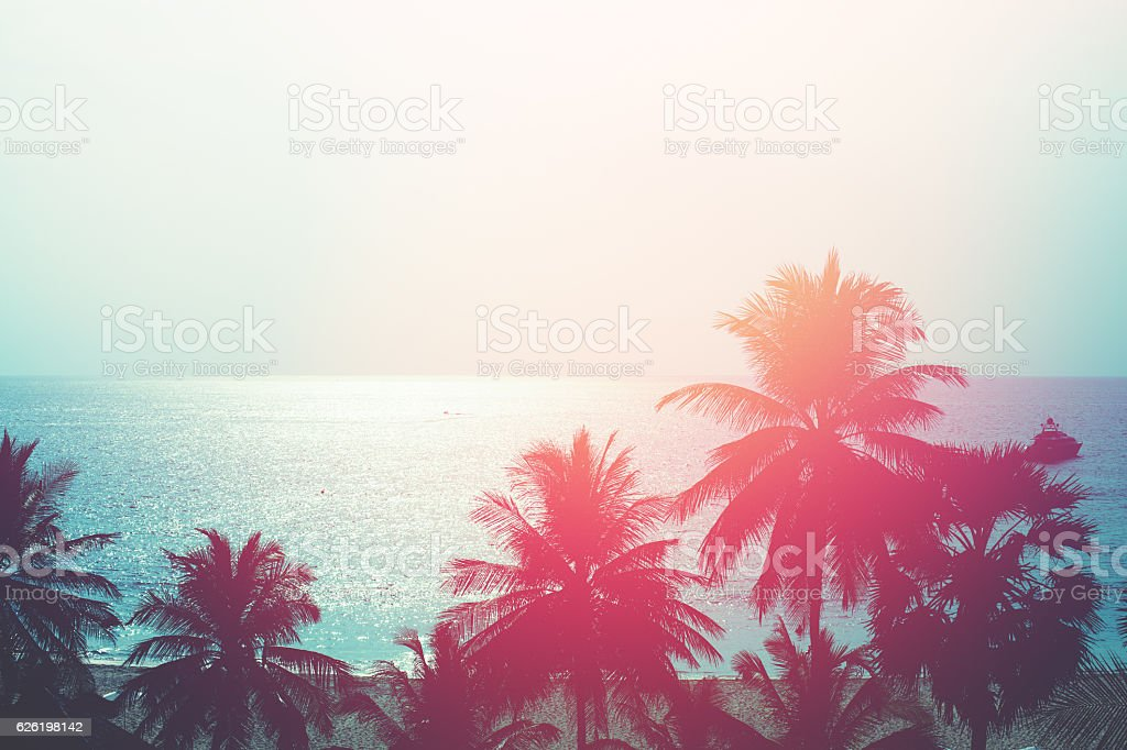 Sunset in tropics. Coconut trees and turquoise sea – Foto