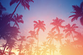Sunset in tropics. Coconut trees and turquoise sea, colorful toned. Shot taken with Canon 5D mk III on the Boracay island, Philippines