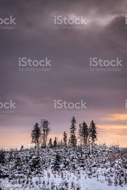 Photo of Sunset in winter mountains