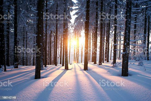 Photo of Sunset in winter period