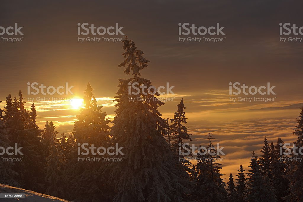 sunset in winter royalty-free stock photo