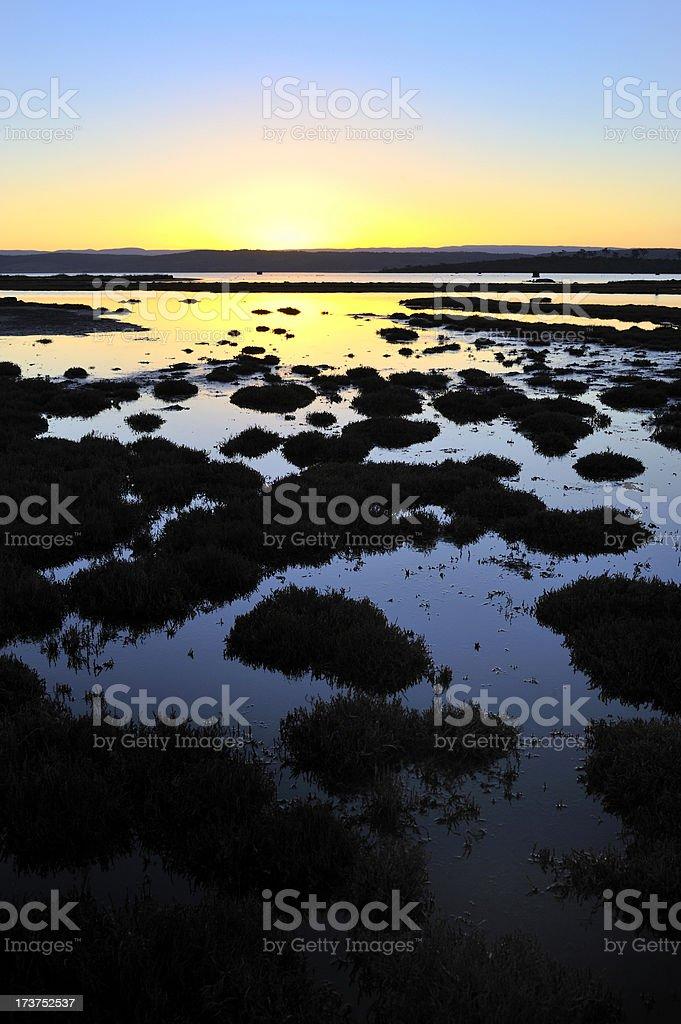 Sunset lagoon royalty-free stock photo