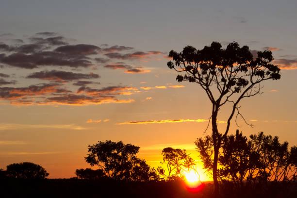 Sunset landscape at Chapada dos Veadeiros, Goias, Brazil. Tropical
