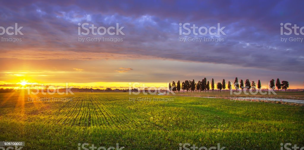 Sunset landscape in Maremma. Rural road and cypress trees. Tuscany, Italy - foto stock