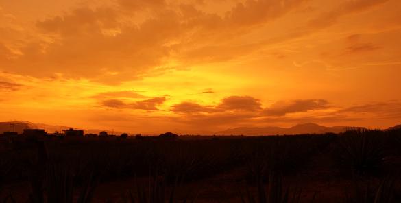 sunset landscape orange getting into the sun
