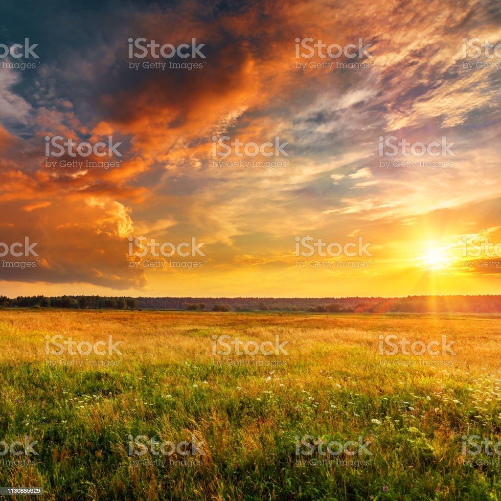 Düz ve orman ile günbatımı peyzaj - Royalty-free Akşam karanlığı Stok görsel