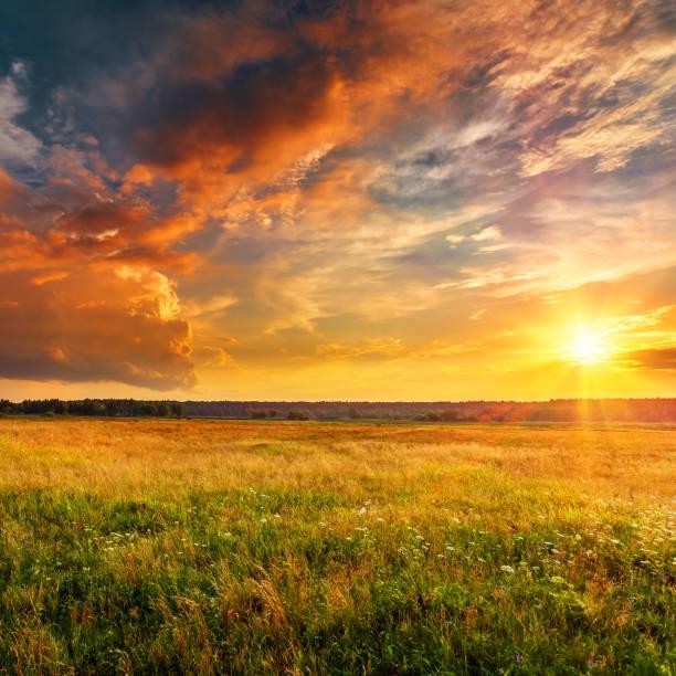 пейзаж заката с равниной и лесом - sunset стоковые фото и изображения