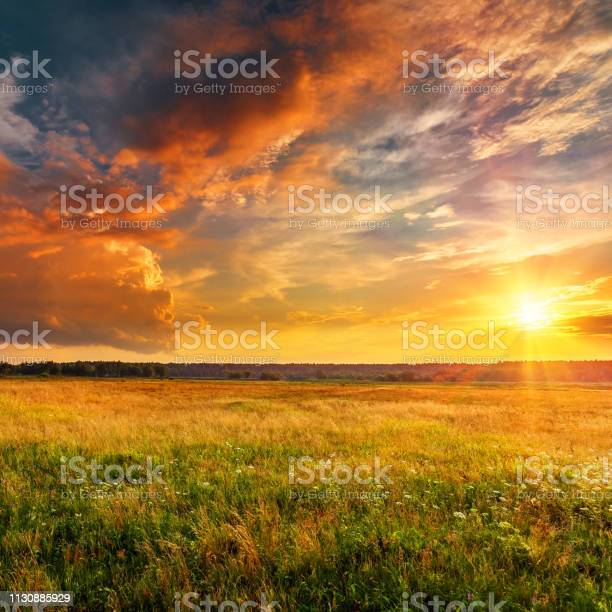 Photo of Sunset landscape with plain and forest