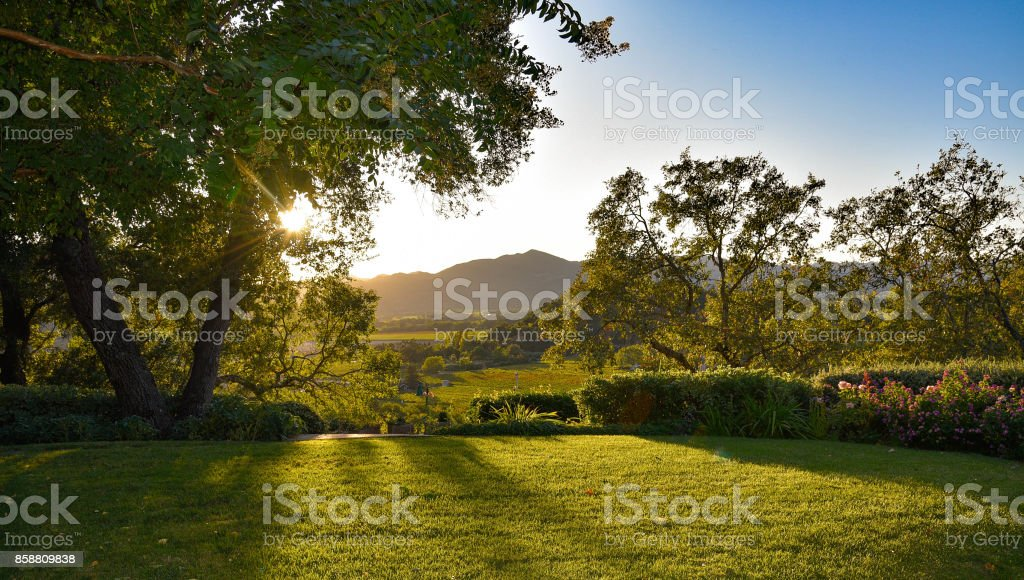 Sunset, Lawn and a view royalty-free stock photo