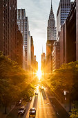 Sunset light shining on the buildings and cars on 42nd Street in Midtown New York City