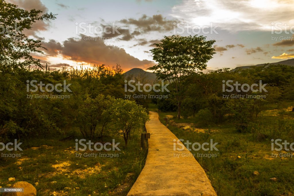 Sunset Lubango Jungle stock photo