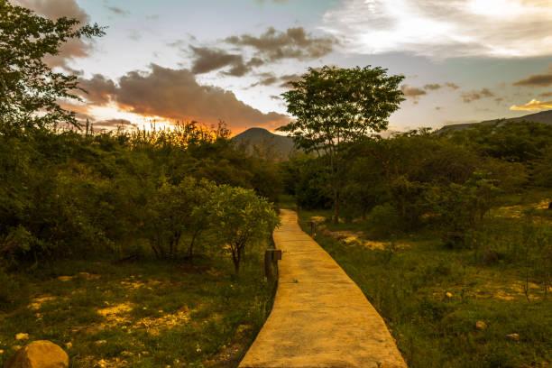 sunset lubango jungle - angola stock photos and pictures