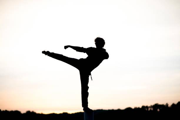 Sunset Martial Arts stock photo