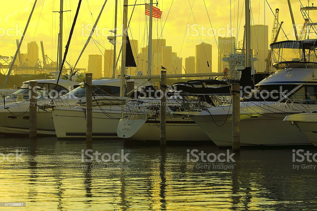 Sunset Miami Beach Marina with luxury yatchs, USA stock photo