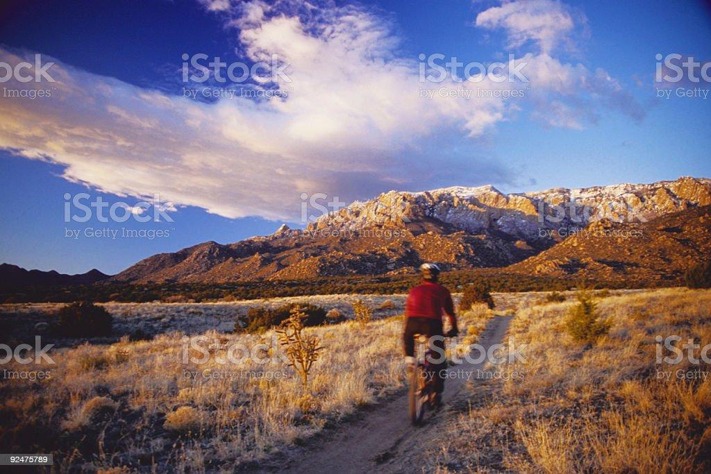 sunset-Mountainbiker in motion Lizenzfreies stock-foto