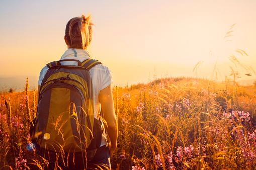 Sunset Mountain Landscape   Mid Adult Women Hiker   Wildflower Alpine Meadow