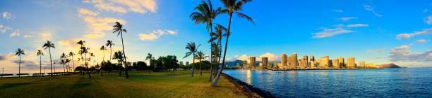 sonnenuntergang von magic island auf hawaii. - palmwedel stock-fotos und bilder