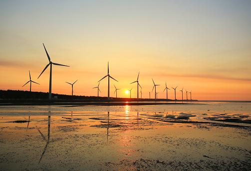 sunset of wind farm