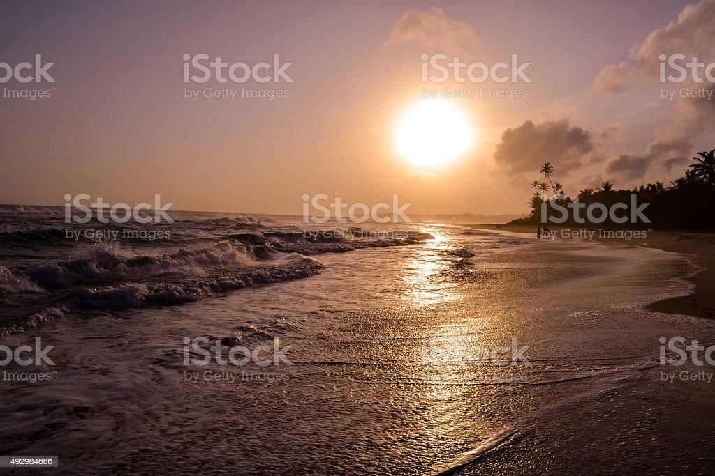 Sunset on a beach of Sri Lanka. stock photo