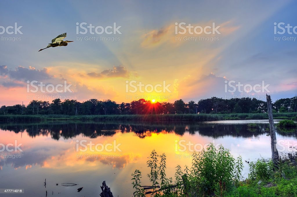 Sunset on a Chesapeake Bay pond stock photo