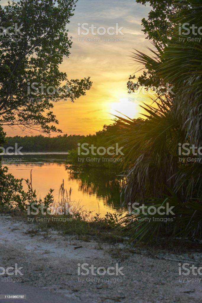 Sunset on a lake at J. N. 'Ding' Darling National Wildlife Refuge on Sanibel Island, Florida stock photo