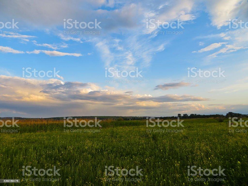Puesta de sol en un prado foto de stock libre de derechos
