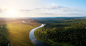 Sunset over the river and pine forest. Tver district (oblast), Russia